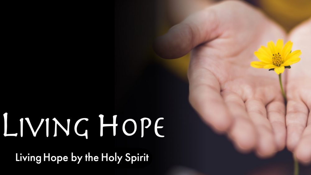 Living Hope by the Holy Spirit